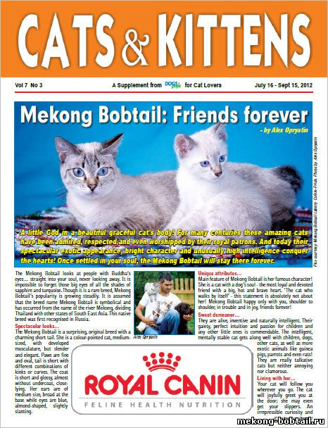 CATS & KITTENS magazine Dogs & pups